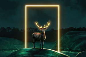 Deer Glow Door 5k Wallpaper