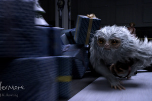 Demiguise Fantastic Beasts And Where To Bind Them