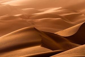 Desert Dune Landscape