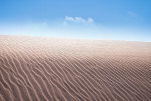 Desert Dune Wave