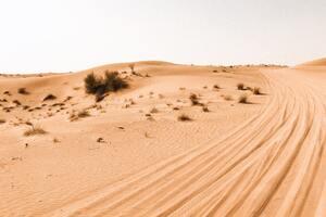Desert Photography 4k Wallpaper