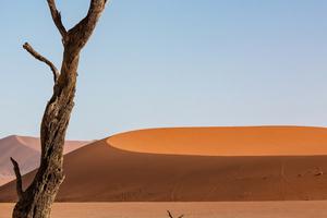 Desert Sand Dune Dunes 5k Wallpaper