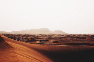 Desert Sandscape 4k
