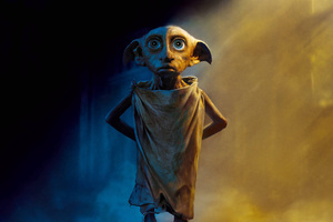 Dobby The House Elf Harry Potter