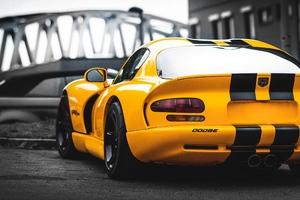 Dodge Viper Rear Wallpaper