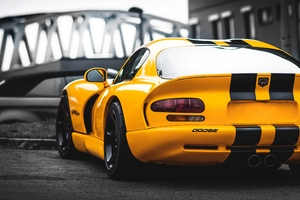 Dodge Viper Rear