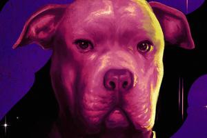Dog In John Wick Chapter 3 Parabellum 4k