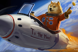 Doge To The Moon Wallpaper
