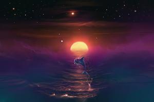 Dolphin Dream 4k