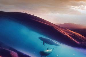Dolphins In Desert 4k