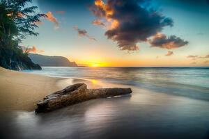 Driftwood On Beach At Sunset On North Shore Of Kauai 8k Wallpaper