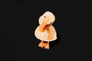 Duckling Minimal 5k Wallpaper