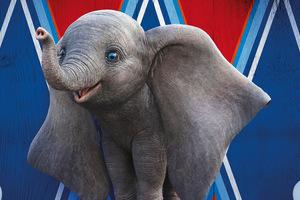 Dumbo 8k