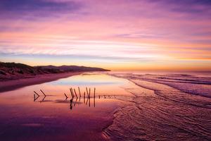 Dunedin Sunrise Wallpaper