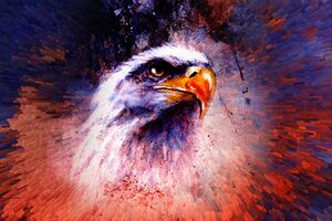 Eagle Abstract 5k Wallpaper