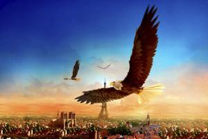 Eagle Flight 4k