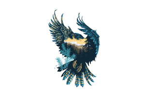 Eagle Minimal 4k Wallpaper