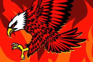 Eagle Of Flames Wallpaper
