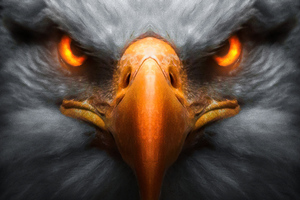 Eagle Red Glowing Eyes
