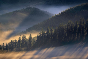 Early Morning Sun Rays Over Trees Mountains 4k Wallpaper