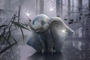Elephant Is This Heaven 4k