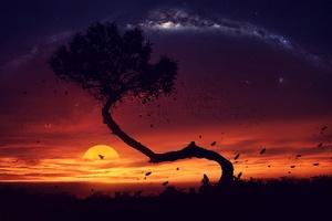 Evening Tree Sunset Digital Art Wallpaper