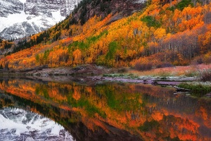 Fall Foliage Forest Lake Nature Reflection
