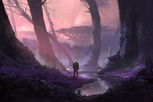 Fantasy Forest Magic 4k Wallpaper