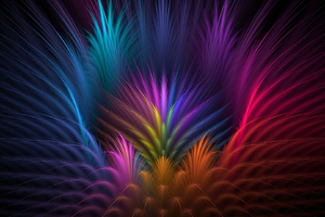 Feathers Colorful Petals Wallpaper