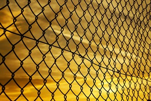 Fence Yellow Sky