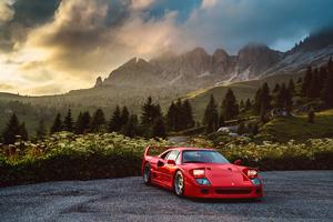 Ferrari F40 In Nature 5k Wallpaper
