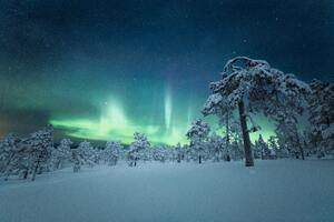 Finland Night Aurora Outdoor Nature 5k Wallpaper