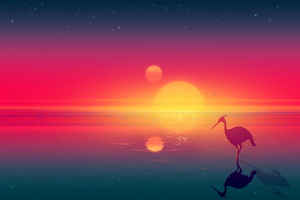 Flamingo Digital Art
