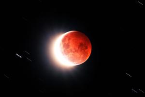 Flower Blood Moon 5k