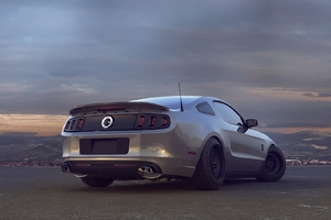 Ford Mustand Shelby Wallpaper