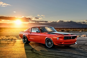 Ford Mustang Muscle Car 4k Wallpaper