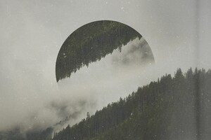 Forest Circle Photo Manipulation Digital Art Wallpaper