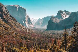 Forest Mountain Yosemite Valley 5k Wallpaper