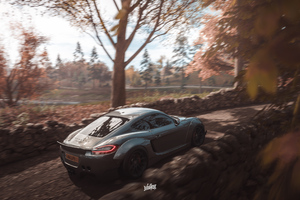 Forza Horizon 4 Porsche 911 Cayman 4k Wallpaper