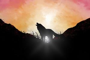 Fox Howling Sunrise 5k Wallpaper