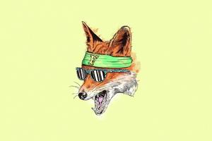 Fox Ninja 4k