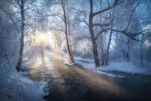 Frost Winter Road 5k Wallpaper