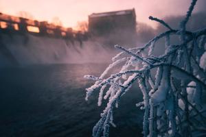 Frozen Winter 4k Wallpaper
