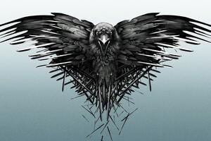 Game Of Thrones Raven Wallpaper