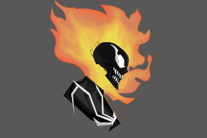 Ghost Rider Into The Venomverse