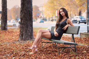 Gir Sitting Bench Autumn 4k Wallpaper