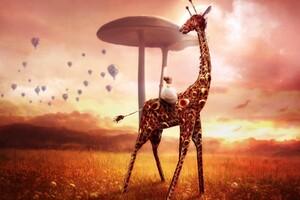 Giraffe Dream Fantasy