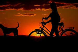 Girl Cycle Dog Morning Walk Wallpaper
