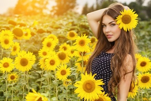 Girl Field Sunflowers 4k