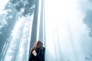 Girl Looking Towards The Tips Of Trees Wallpaper